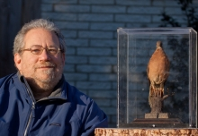 The Passenger Pigeon and its Legacy	by Joel Greenberg