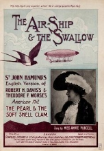 Cover of The air-ship & the swallow