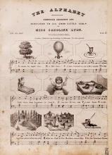 Cover of The alphabet