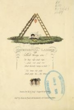 Cover of Matrimonial ladder