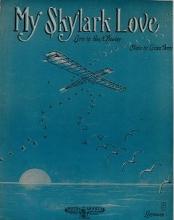 Cover of My skylark love