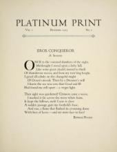 Cover of Platinum print
