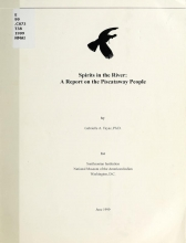 Cover of Spirits in the river