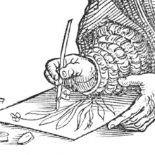 detail from a woodblock print showing a hand drawing with a quill pen