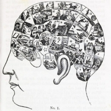 illustration of a human head with the brain area filled with little compartments containing scenes meant to illustrate phrenological diagnoses