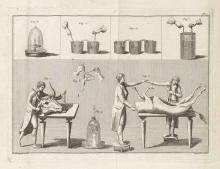 Giovanni Aldini. Essai théorique et expérimental sur le galvanisme Theoretical and experimental essay on galvanism Paris, 1804.