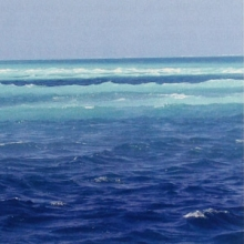 Image of the ocean near Rasdhoo Atoll.
