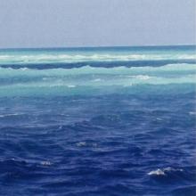 Image of the ocean near Rasdhoo Atoll.
