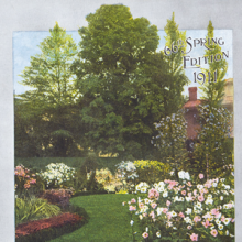 photo of a garden with trees and flowers