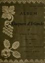 """Cover of """"Album de guipure d'Irlande /"""""""