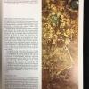 Secrets of Ancient Gold