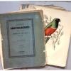 Esquisses ornithologiques- Descriptions et  figures d'oiseaux nouveaux ou peu connus.