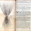 Synopsis methodica stirpium britannicarum.