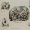 Phrenological Illustrations