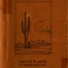 Book cover of The Desert Garden