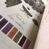 Detail image of colors and illustration of lichen