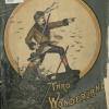 Wonderland, cover