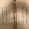 Sekai isshū nikki (世界一周日記)