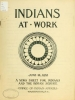 "Cover of ""Indians at work"""