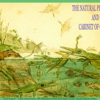 The Natural Philosopher and his Cabinet of Curiosities