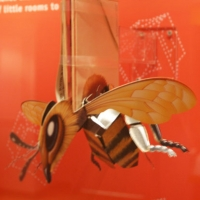 Bee from a popup book